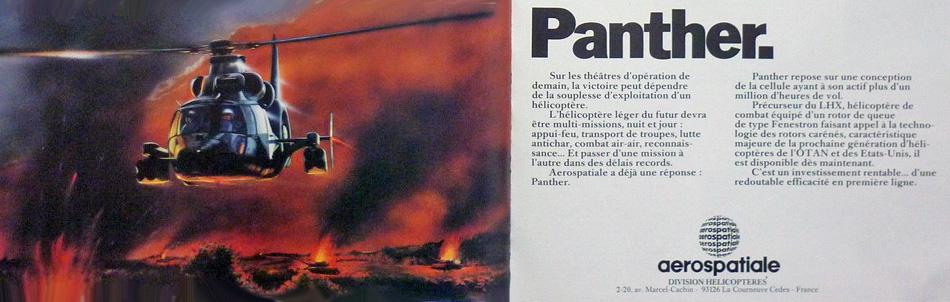 panther5